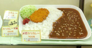【フード】練馬区役所のメガカツカレー(東京都)